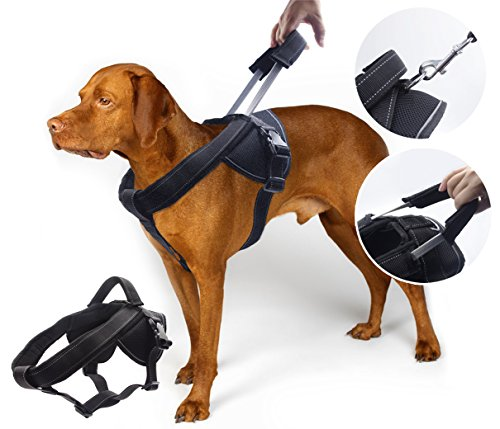 YOGADOG - Heavy Duty Dog Harness, Soft Padded...