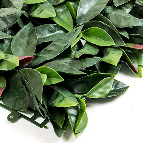 STI Siepe Sintetica Sempreverde Fotinia Red Robin 50x100cm