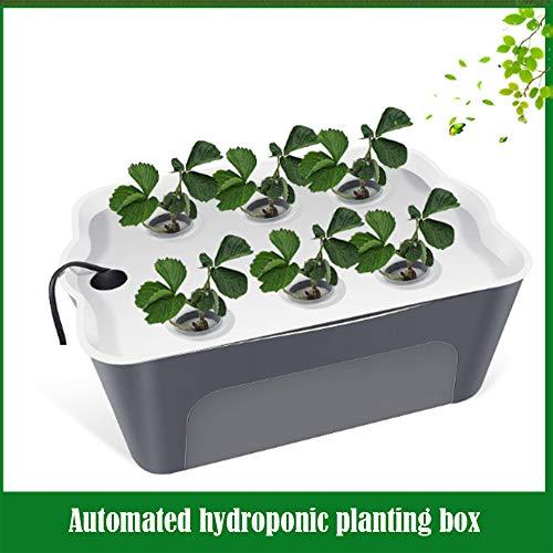 Intelligent Hydroponic Planter 6 Hole Huis Balkon Automatische Hydroponic Groenten En Fruit Planting Box Soilless Landbouwwerktuigen Geschikt Voor Het Planten Van Groenten Meloenen Fruits