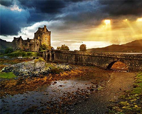 Jiedoud Rompecabezas De Madera para Adultos para 1000 Piezas Decoración De Imagen De Bricolaje para Decoración del Hogar - Castle Ruins Bridge