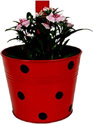 Cocogarden Metal Round Railing Planters Dotted(Red)