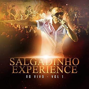 Salgadinho Experience Ao Vivo - Vol 1