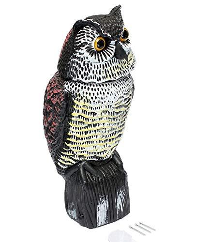 Greetuny Épouvantail de Corbeau Hibou en Plastique Proie Anti-parasites Lutte Contre Les Nuisibles Oiseau Répulsif étang (16(W) x 15(D) x 36(H) cm)