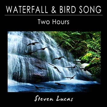 Waterfall and Bird Song - Two Hours