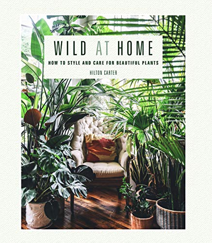 Wild at Home: How to style and care for beautiful plants (English Edition)