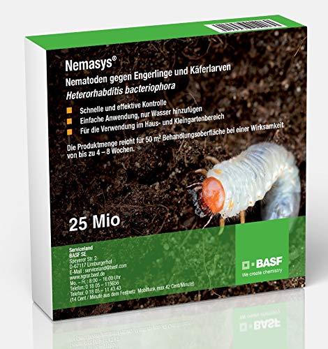 Nemasys® BASF HB Nematoden 25 Mio. (50m²) gegen Engerlinge und Käferlarven (Dickmaulrüssler, Maikäfer u.a.)