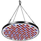 Niello® Reflector 50W LED Pflanzenlampe, LED Grow Light Vollspektrum Pflanzenlicht Led Grow Lamp nur 1 cm Dick mit Schalter...
