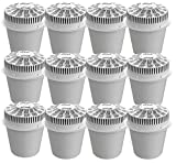 Little Luxury Vitality Replacement Filter Cartridge 12 Pack
