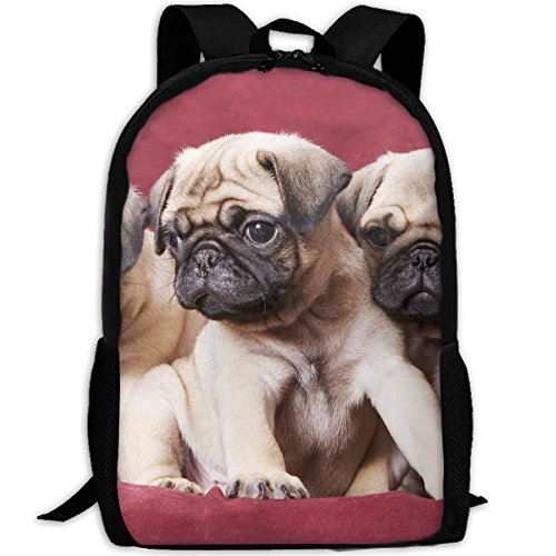 fsfsdafsaBags Pugs, Sofas, Blankets, Color Photographs 3D Print Sac à DOS de Voyage College School Laptop Bag Daypack Travel Shoulder Bag for Unisex