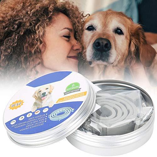 XQAQX Collar para Mascotas, Collar antipulgas, Collar antimosquitos, Collar antimosquitos Ajustable para Exteriores Collar Repelente de piojos de pulgas para 8 Meses Suministros para Mascotas(Perro)