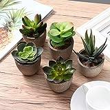 Yardwe 5 Stücke Künstliche Sukkulenten kunstpflanze mit Töpfen Tischdeko Hausgarten Deko - 8