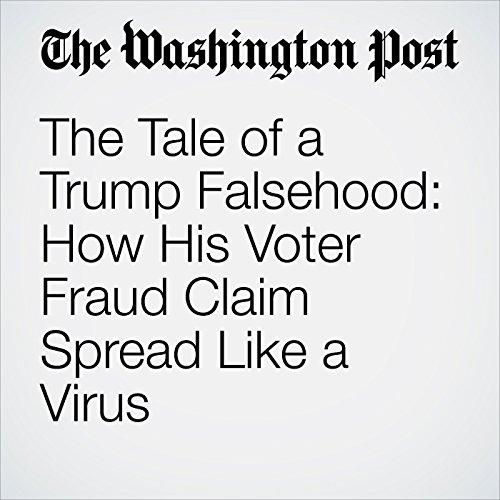The Tale of a Trump Falsehood: How His Voter Fraud Claim Spread Like a Virus copertina