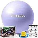 arteesol Ballon Fitness, Ballon d'exercice Balle de Fitness de 45cm/55cm/65cm/75cm/85cm Ballon d'équilibre de stabilité...