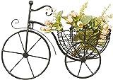Soporte para Plantas Soporte de maceta Moderno flor en maceta Pendiente de pared Flor montado en la pared Metal Pequeño Bicicleta Forma Flor Exhibición Estante Sala Salón Tienda Pared Decoración