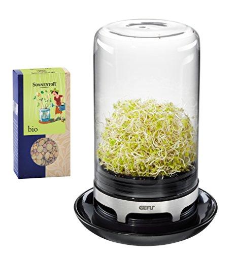 GEFU 00113 Sprossenglas BIVITA + Sprossensamen, aus Glas, für Keimsaaten wie Alfalfa, Mungbohnen, Radieschen, Kichererbsen und Linsen