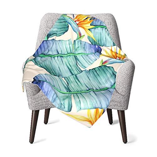 Manta para niños, manta de bebé con patrón tropical de lujo, manta de felpa suave para niños y niñas, manta de recepción de 76 x 40 pulgadas