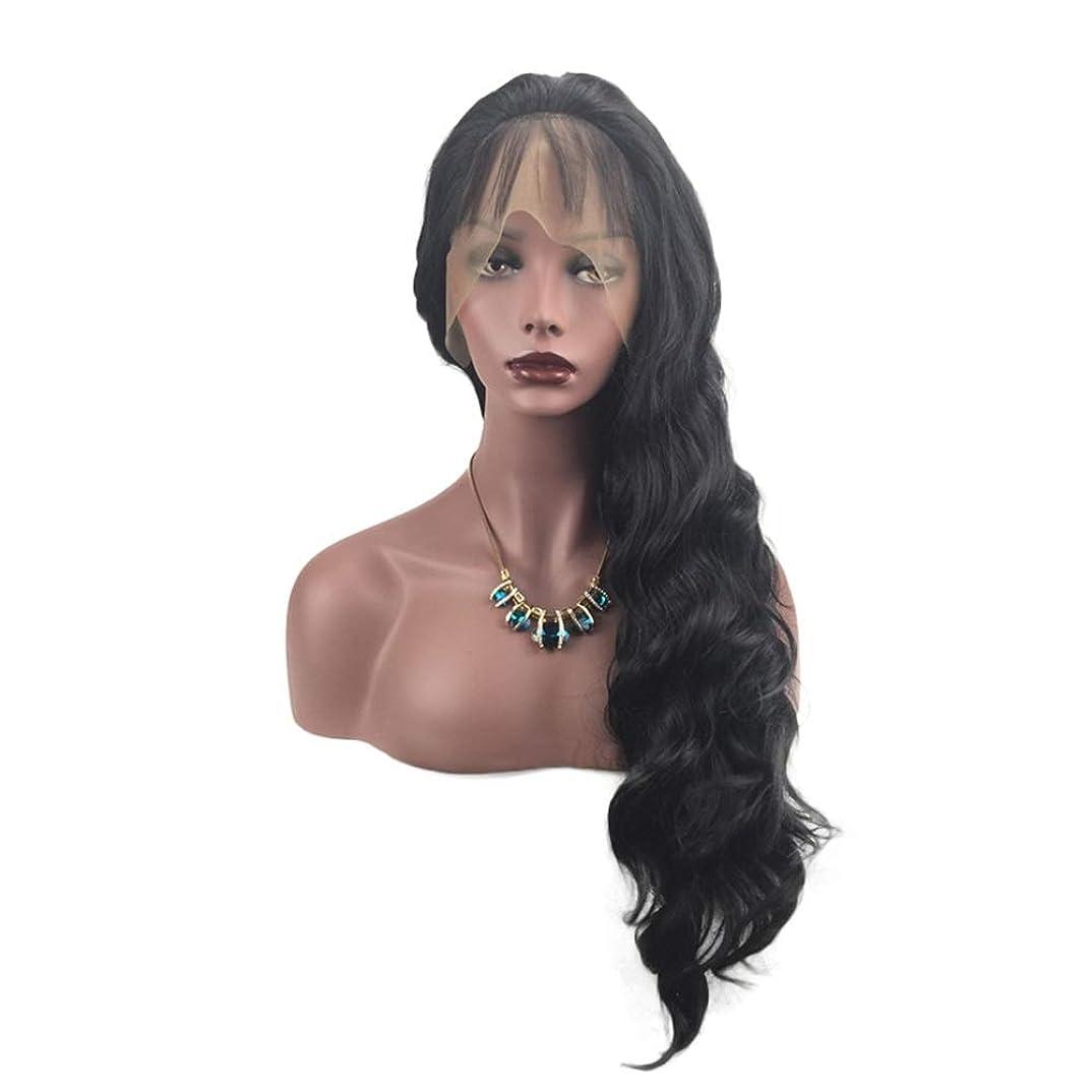 変化小川一致するHAILAN HOME-かつら 手織りウィッグ女性のフロントレースのどれフェイスタイプナチュラルグラフィック換気のための合成想起カーリーヘアウィッグセット