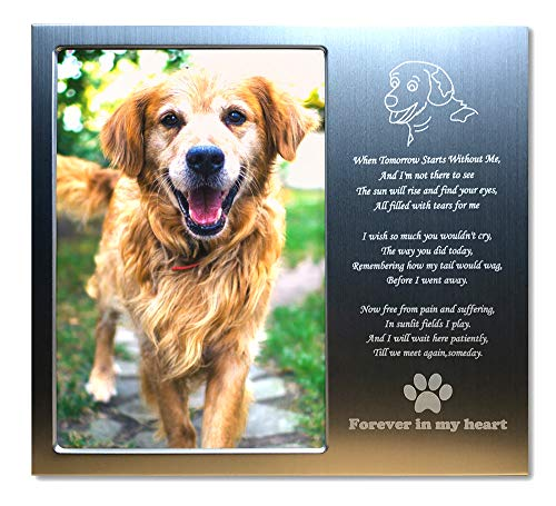JOEZITON Pet Memorial Personalized Metal 4x6 Picture Frame Gift (Opts) Photo Frame for Loss of Dogs or Cats.(01A)