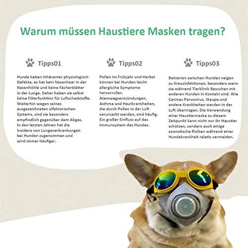 Kricson Masken für Hunde 3 Stück Anti Atmosphärischer Dunst Filter Mundschutz Maske für Haustiere Giftköder Schutznetz Maulkorb Giftköder PM2.5 Schutzmaske Betätigungen im Freien (S) - 3