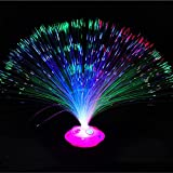 led multicolor changing fiber light colourful changing fiber optic fountain party light, holiday