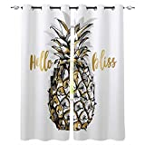 Jbralid Blackout Room Darkening Hello Pineapple Bliss White Background Shadow for Bedroom Office Hotel Window Curtain(52Wx63L) 2 Panels