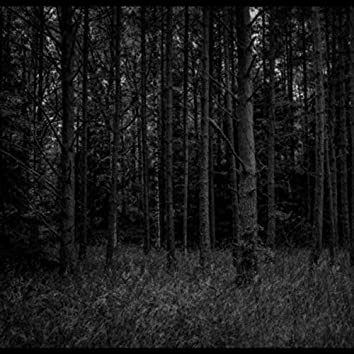 THE VINTAGE FOREST