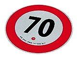 INT AUTO 1205320 Portaoggetti Net (Automobile)