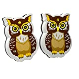 WEKOIL Magnetic Dry Erase Erasers Whiteboard Eraser Chalkboard Eraser Cute Owl Erasers