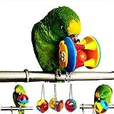 ECOOLBUY 3 pièces mignon animal de compagnie oiseau morsure jouet perroquet à mâcher balle jouets balançoire Cage cockatiel perruche chien chat jouant à la balle