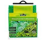 Dehner Frühbeetfolie mitwachsend, ca. 7.2 x 1.4 m, Kunststoff, grün