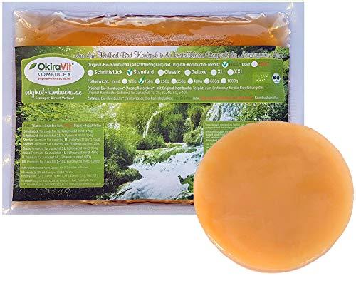 Original-Kombucha-Teepilz Premium Qualität + Bio-Kombucha-Getränk für 1 L, Anleitung +...