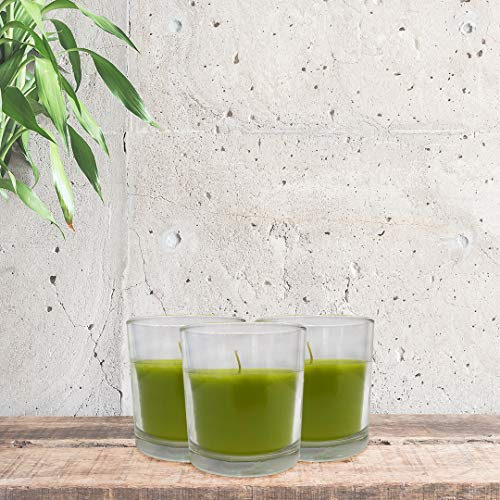Promol Candle 10 Candele in bicchiere rotondo di vetro Cor Verde