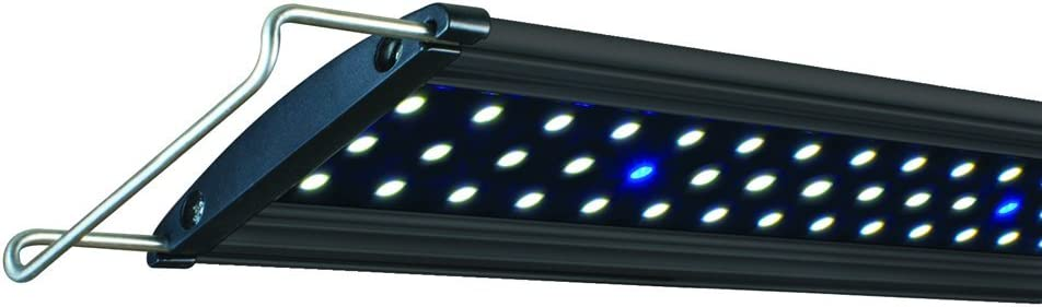 Manufacturer regenerated product Lifegard Aquatics Full Spectrum Ranking TOP15 Lights LED Aquarium