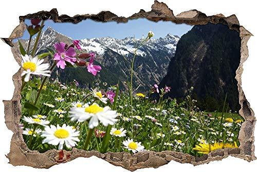 Tatuaje de pared en 3D agujero de la pared Sticker Pegatina Adhesivo Calcomanía Decoración para dormitorio o la sala de estar,magnífica pradera alpina en las montañas 80x125cm