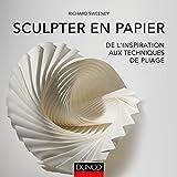 Sculpter en papier - De l'inspiration aux techniques de pliage