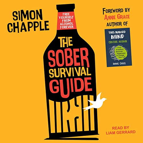 The Sober Survival Guide cover art