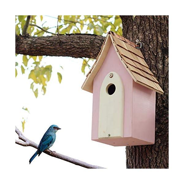Sungmor Gifts & Decor Natural Nest Wooden Wall Hanging Bird House |Stylish Birdhouse | Outdoor Garden Decorating Birdhouse