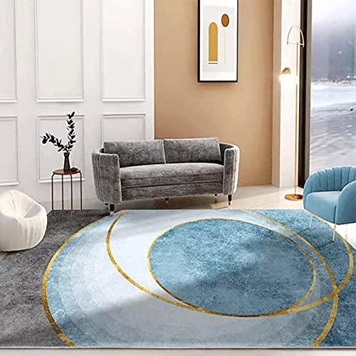 WmHeoo2077 Alfombra Shaggy para Salón habitación,imitación mullida Alfombras imitación,Mesa de Centro Simple para Sala de Estar, Alfombra de Oficina para Piso Completo-J_120 x 160 cm