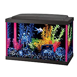 Aqueon Fish Aquarium Starter Kit