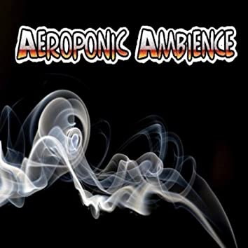 AEROPONIC AMBIENCE