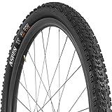 Maxxis Aspen EXO/TR Tire