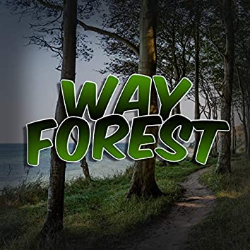 Way Forest