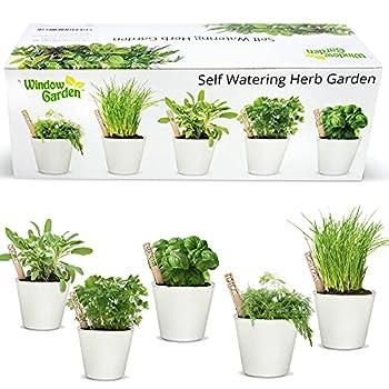 Best windowsill herb garden kit Reviews