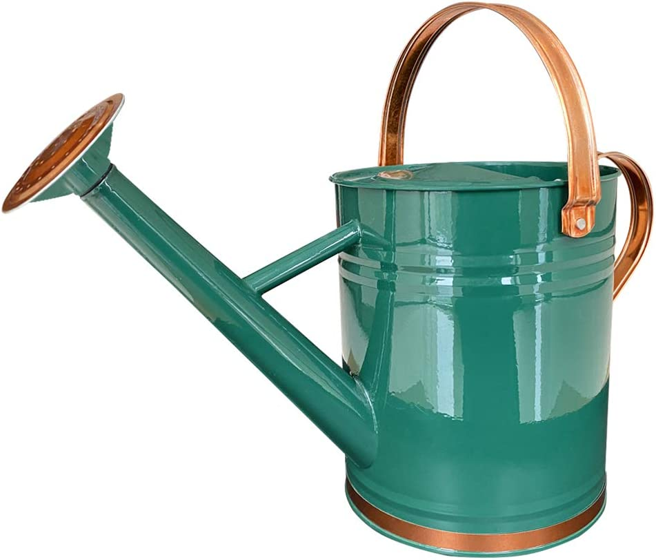 Galvanized Steel Watering Can Metal Watering Can for Outdoor Plants with Copper Accents 1 Gallon, Green