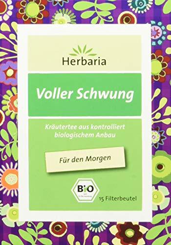 Voller Schwung Tee bio 15 FB