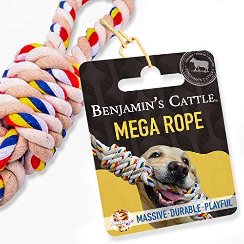 Benjamin's Cattle - Dog Rope Toy - 2 Grip Loops 2 Massive Knots - Tug of War Rope - Heavy Duty Dog Toy - Toy - Natural Rope Dog Toy - Rope Toys Aggressive Chewers - Dog chew Toy - Dog Toy