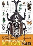 昆虫の図鑑 路傍の基本1000種
