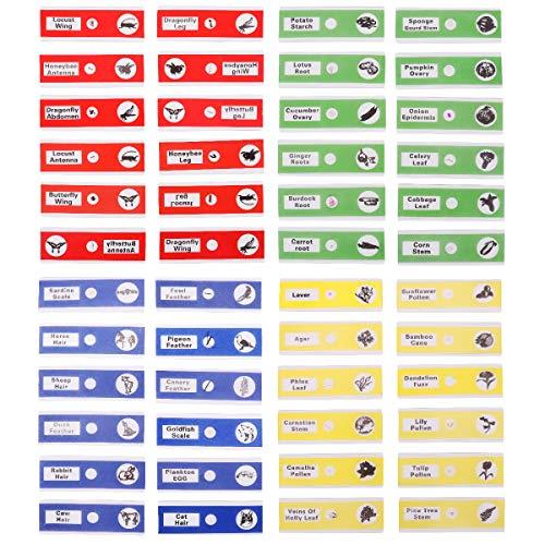 UEETEK 48 Piezas Preparado portaobjetos, 4 colores Muestra b