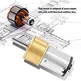 Motor de engranajes, motor de engranajes de metal de 14 mm, N20 para robot DIY(6V 300RPM)