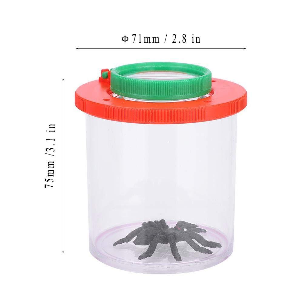 Visor Insectos, Insectos Observación Caja, 3 Veces 8 Veces ...